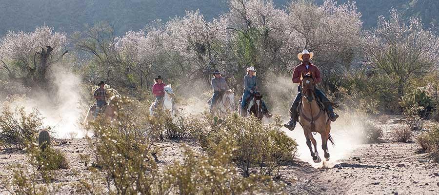 White Stallion Ranch Fast Rides