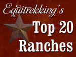 Top 20 Ranches Logo