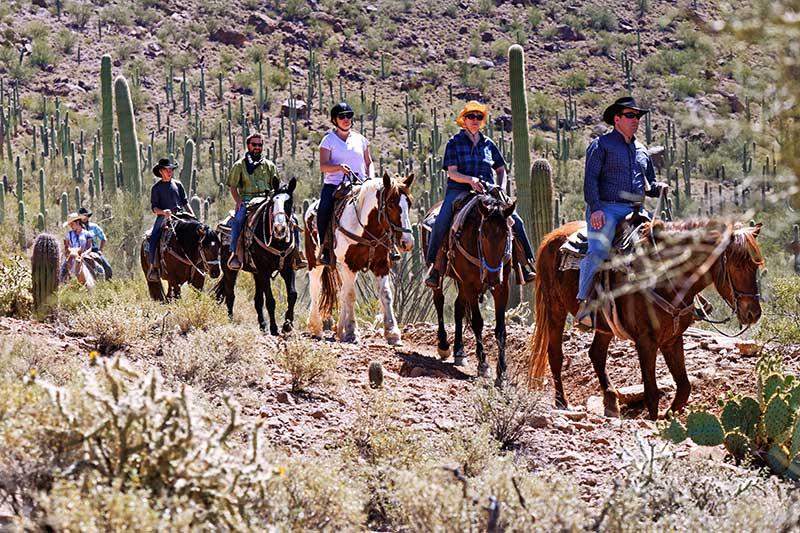 White Stallion Ranch Mountain Rides