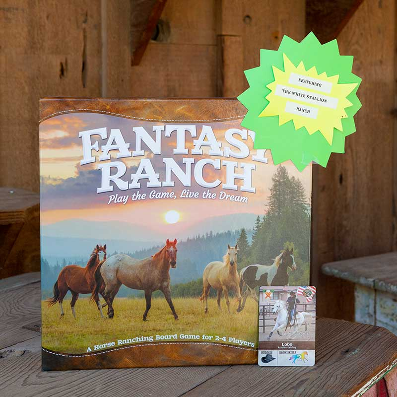 WSR Featured Ranch Board Game