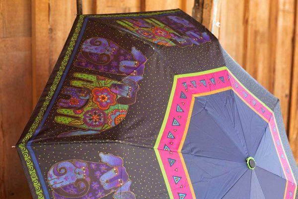 Reagan's Umbrella